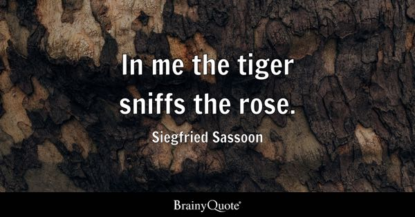 Tiger Quotes Magnificent Tiger Quotes BrainyQuote