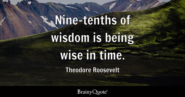 Nine-tenths of wisdom is being wise in time. - Theodore Roosevelt
