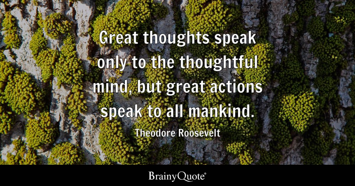 Theodore Roosevelt Quotes Fair Theodore Roosevelt Quotes  Brainyquote