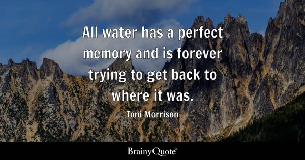 All water has a perfect memory and is forever trying to get back to where it was. - Toni Morrison