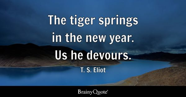 Tiger Quotes Extraordinary Tiger Quotes BrainyQuote