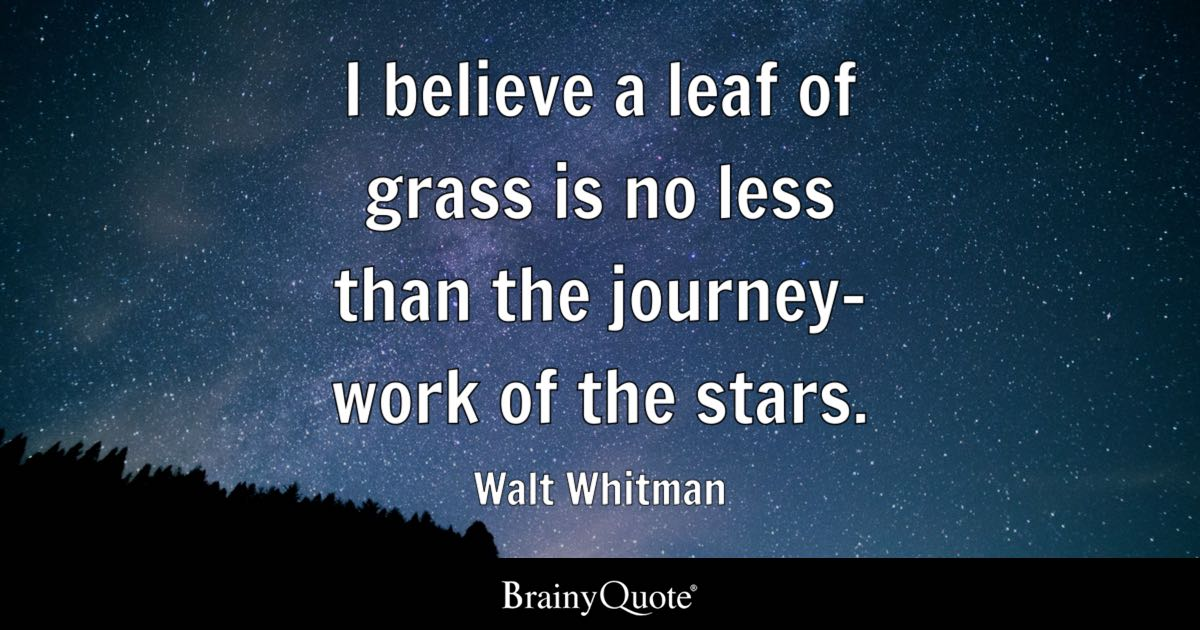 I believe a leaf of grass is no less than the journey-work of the stars. - Walt Whitman