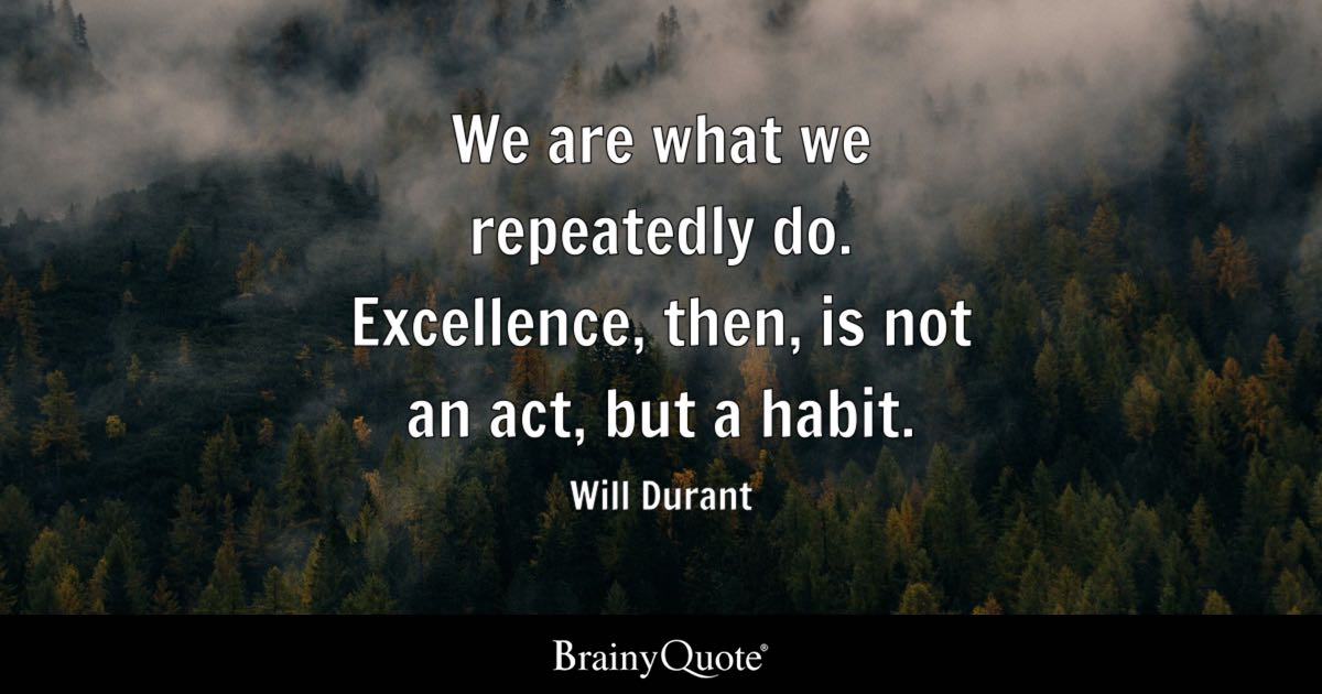 We Are What We Repeatedly Do Excellence Then Is Not An