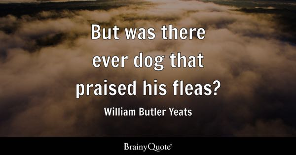But was there ever dog that praised his fleas? - William Butler Yeats